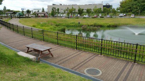 愛彩ランドの横の池