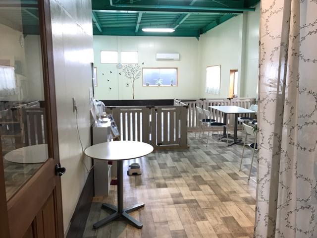 モモカフェ室内ドッグラン