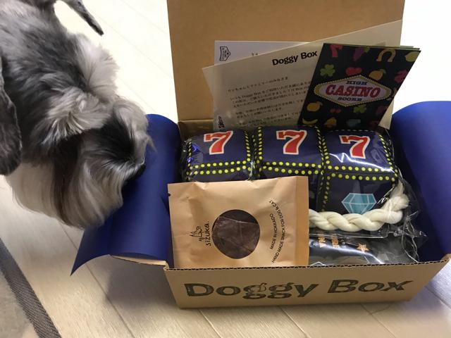 ドギーボックスと愛犬