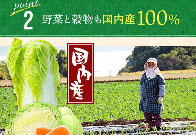 リブドッグの原材料国産野菜と穀物