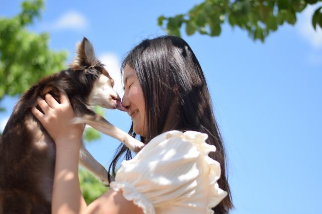 女の子と愛犬