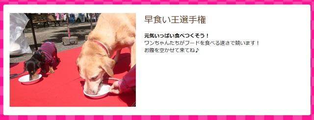 パートナードッグカーニバル in淀川・西中島