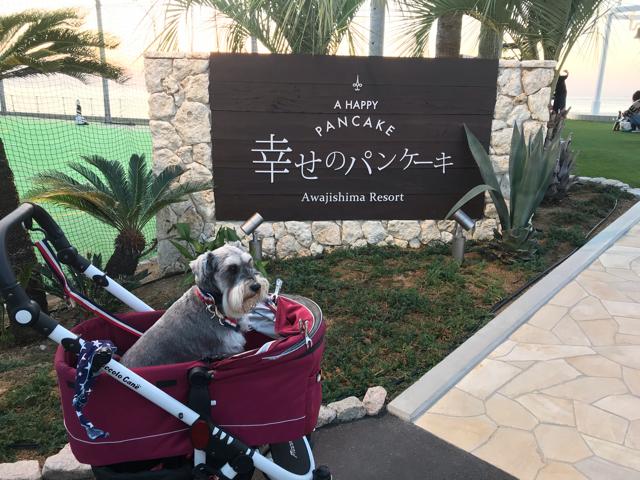 幸せのパンケーキ淡路島テラス店の看板と愛犬