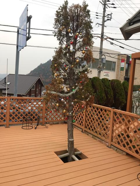 ドッグカフェあんじんのクリスマスツリー