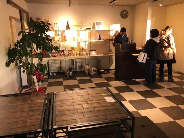 ドッグカフェメイプルの店内