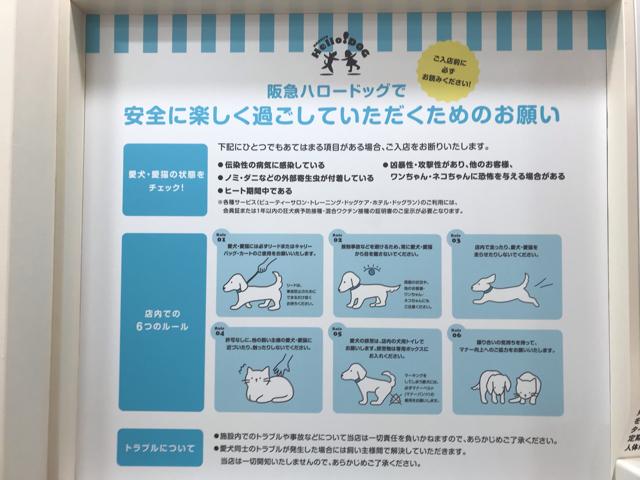 阪急ハロードッグ西宮阪急店の利用規約看板