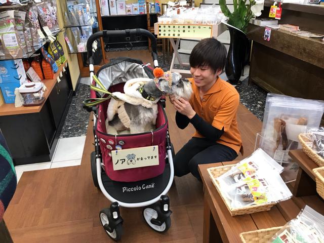 帝塚山ハウンドカムのスタッフさんと愛犬