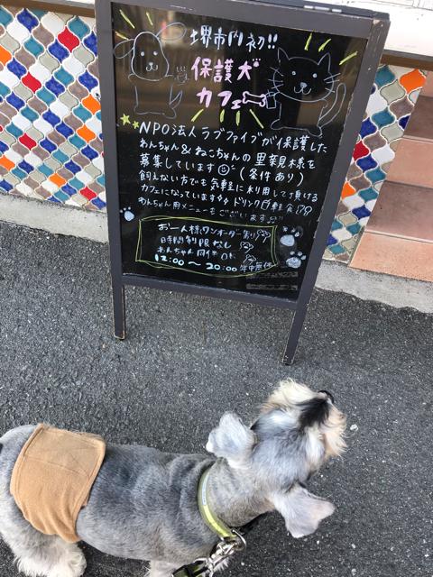 保護犬カフェ堺店の看板