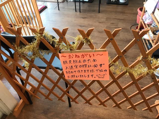 保護犬カフェ堺店の入口ゲート