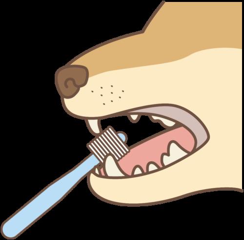 歯磨きをしている犬のイラスト