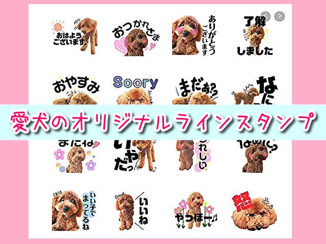 16個2000円~!愛犬の写真を使用した可愛いオリジナルラインスタンプを注文してみたよ♪コメント入り!