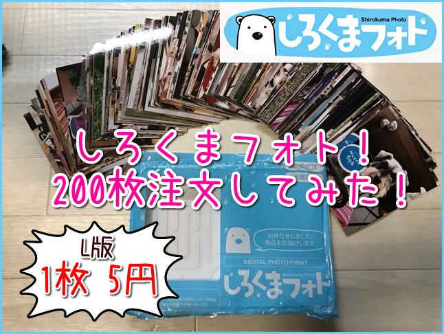 しろくまフォトプリントが200枚届いた!オリジナルL版写真が1枚5円!可愛い愛犬のアルバムを作ろう!
