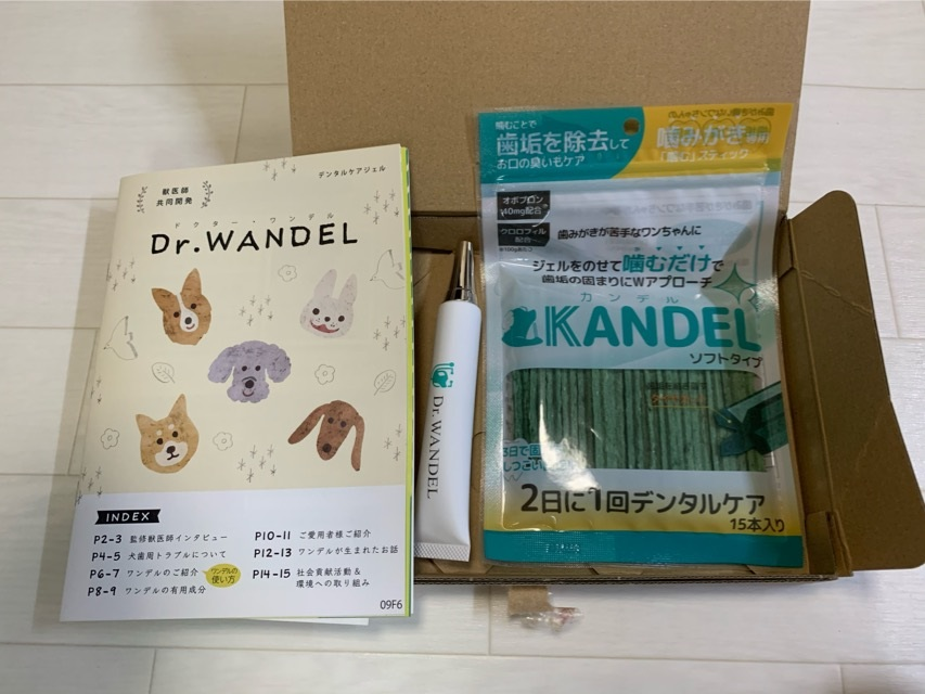ドクターワンデルとカンデルのセット