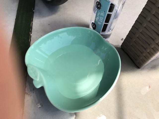アーラキッチンのワンちゃん用水飲み皿