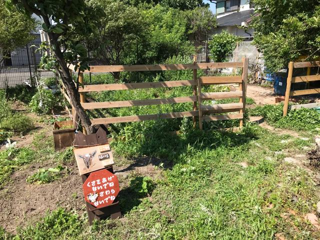 アーラキッチンの庭にいるヤギさん