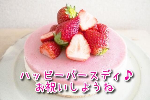 犬用ケーキのイメージ写真