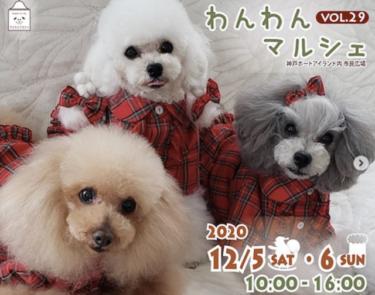 わんわんマルシェ第29回!2020年12月5(土)6日(日)場所はいつもの神戸ポートアイランド市民広場!