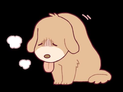 体調が悪い犬のイラスト