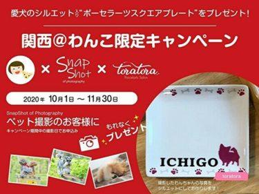 【関西@わんこ限定】ペット撮影SnapShot×ポーセラーツ作家toratoraコラボ企画!愛犬シルエット(お名前入り)プレートプレゼント!