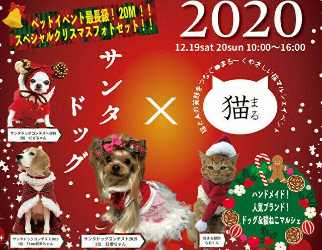 クリスマスパーク2020