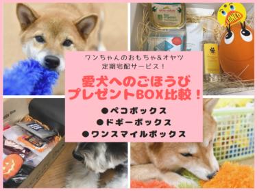 ワンちゃん向けのおもちゃ&オヤツ定期宅配サービス3つを比較!愛犬にピッタリなプレゼントBOXはどれ?