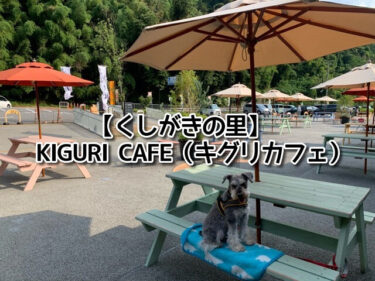 くしがきの里にあるキグリカフェのテラス席に座る愛犬