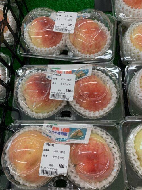 くしがきの里で購入した桃